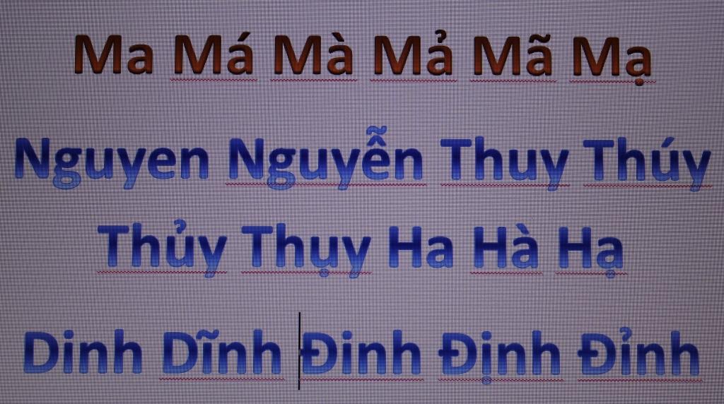 vietnamese-2