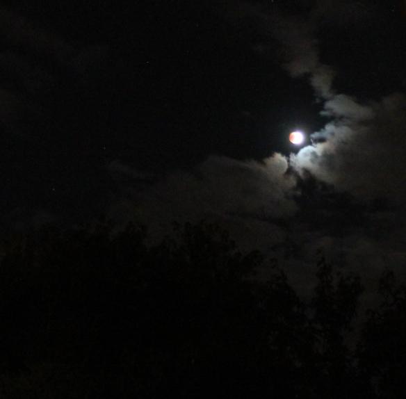 Look closely for the peck of red that covers the moon, and the stars, too - Nhìn kỹ sẽ thấy cái vệt hơi đỏ che mặt trăng, và các ngôi sao nữa (Photo: Anvi Hoàng)